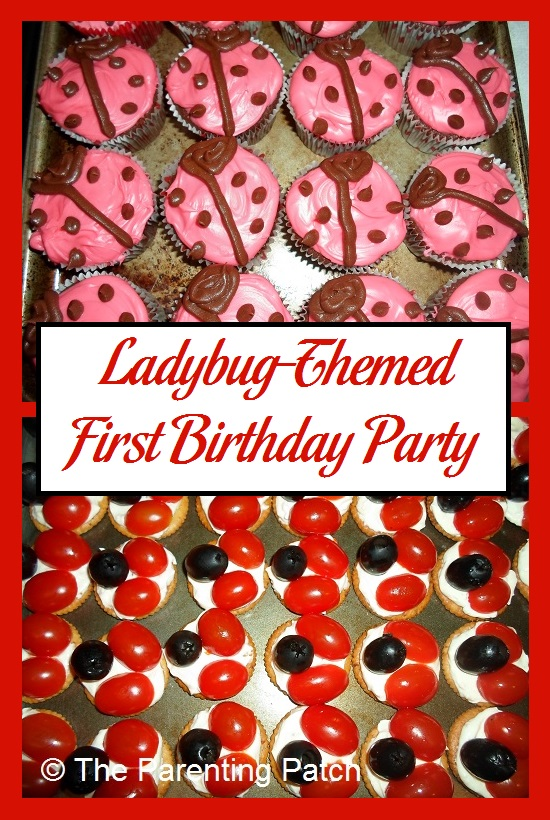 Ladybug Themed First Birthday Party