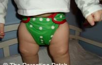 Mistletoe Best Bottom: Daily Diaper