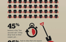 Clean Carpet Conundrum: An Infographic from Rug Doctor