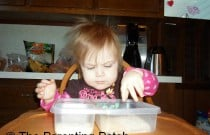 Making a Dried Food Sensory Box for Poppy