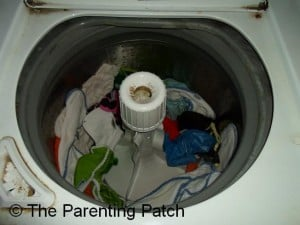 Washed Cloth Diapers in Washer