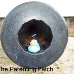 The Duck in the Cannon