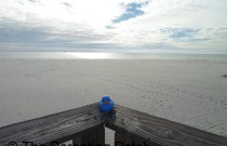 The Duck on the Dauphin Island Pier: The Rubber Ducky Project Week 18