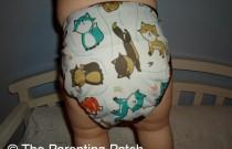 Foxtrot Best Bottom: Daily Diaper