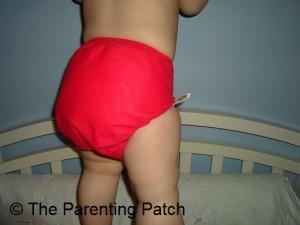 Razzle Ecobumz Cloth Diaper 6