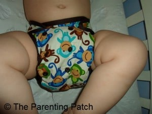 Monkey Fun Planet Wise Cloth Diaper 3