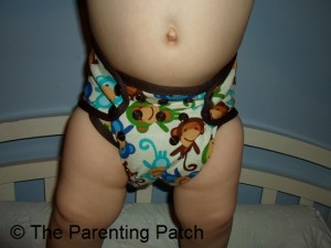 Monkey Fun Planet Wise Cloth Diaper 5