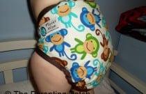 Monkey Fun Planet Wise: Daily Diaper