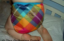 Preppy Rumparooz: Daily Diaper