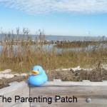 The Duck on the Dauphin Island Boardwalk