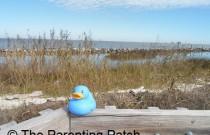 The Duck on the Dauphin Island Boardwalk: The Rubber Ducky Project Week 21