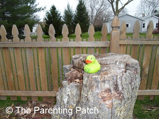 The Duck on the Tree Stump