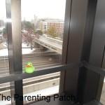 The Duck Overlooking the Illinois State University Bridge