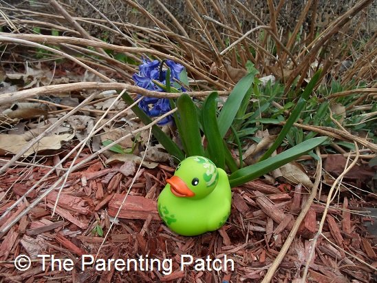 The Duck and the Purple Flower