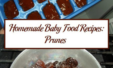 Homemade Baby Food Recipes: Prunes