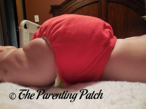Side of Ecobumz All-In-One Cloth Diaper on 17 Pound Infant 2