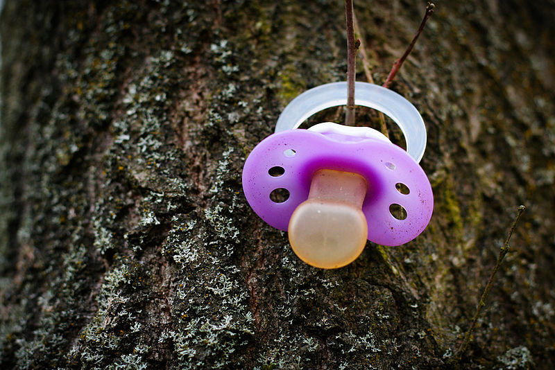 Pacifier on Tree
