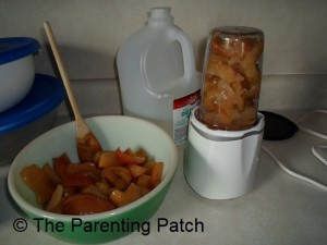Mashed Apple Baby Food