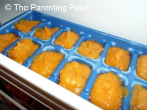 Apples and Squash Baby Food Cubes