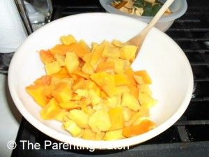 Cooked Butternut and Acorn Squash Slices