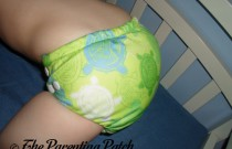 Bumkins Turtle: Daily Diaper