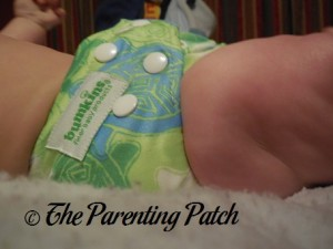 Bumkins Snap-in-One Diaper on 17 Pound Infant 2