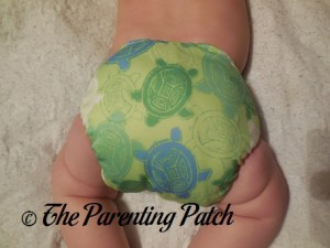 Bumkins Snap-in-One Diaper on 17 Pound Infant 4