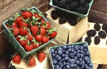 Berry Hepatitis A Outbreak Highlights Importance of Vaccination