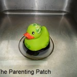 The Duck in the Kitchen Sink