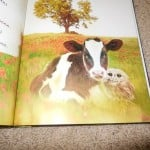 Cow and Owl in Owl Always Love You