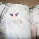Ghost Owl in Owl Always Love You