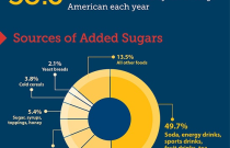 Sugar: Too Much of a Sweet Thing Infographic