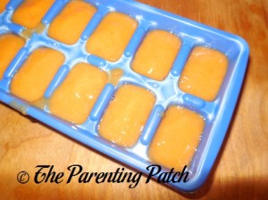 Peach and Apricot Baby Food Cubes