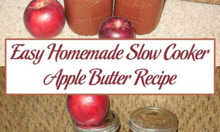 Easy Homemade Slow Cooker Apple Butter Recipe