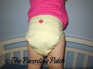 Back of Buttons Diaper with Large Insert