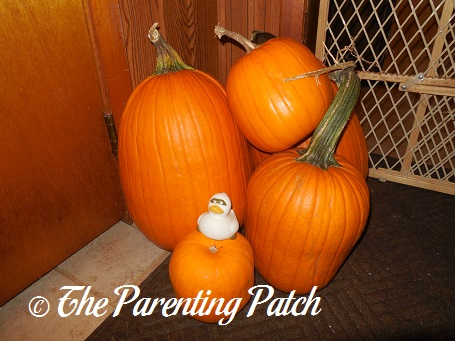 The Duck and the Pumpkins: The Rubber Ducky Project Week 46