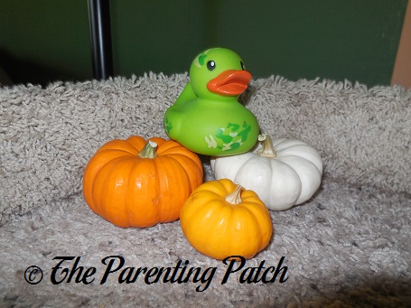 The Duck and the Miniature Pumpkins: The Rubber Ducky Project Week 47