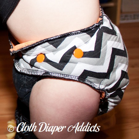 Webmaster Diapers by Chris Cloth Diaper 4
