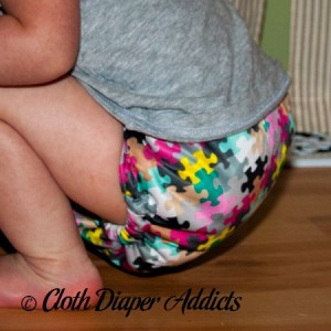FuzziBunz Pink Puzzle Cloth Diaper 4