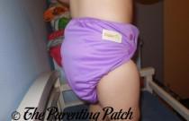 Amethyst Diaper Rite All-in-One: Daily Diaper