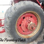The Duck and the Tractor Wheel
