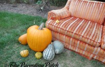 The Duck and the Pumpkin Orange Couch: The Rubber Ducky Project Week 37