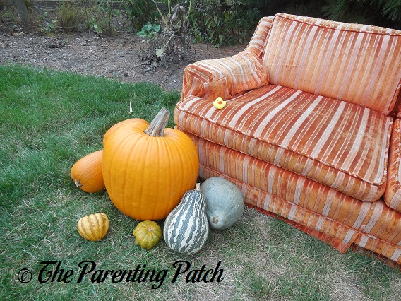 The Duck and the Pumpkin Orange Couch