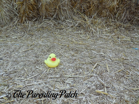 The Duck and the Straw