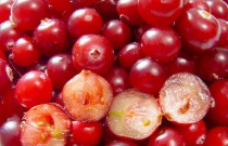 Cranberry Relish Recipe