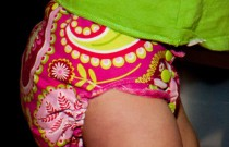 Pink Paisley Diapers by Chris: Daily Diaper
