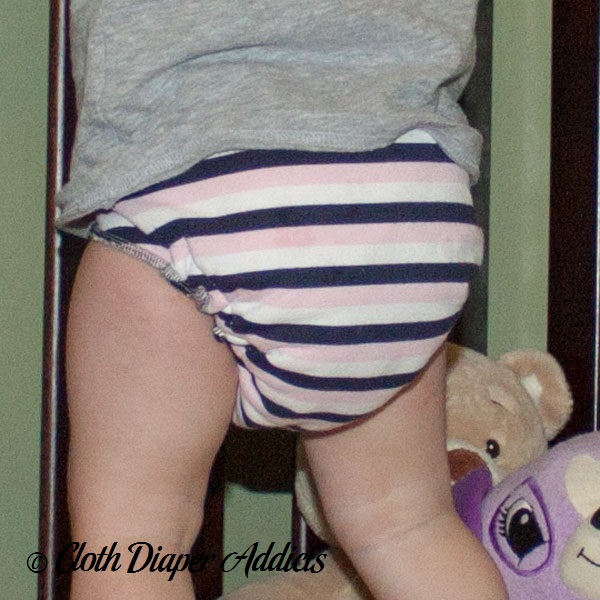 The Sassy Monkey Fitted Cloth Diaper 5