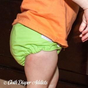 Apple Green Cloth Diaper 4