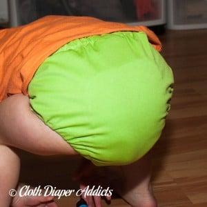 FuzziBunz Apple Green Cloth Diaper 5