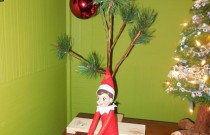 The Elf and the Charlie Brown Christmas Tree: The Elf on the Shelf Day 2